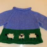 Rolled Edge Baby Raglan Sweater
